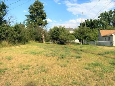 Stevensville Residential Lots & Land Under Contract Taking Back-Up : Nhn Mission Street