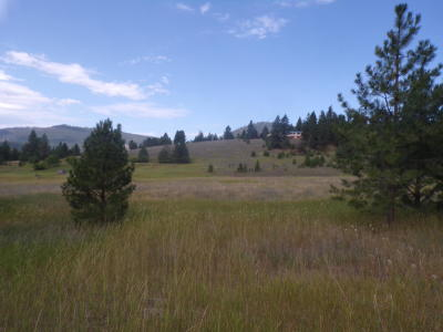 Polson Residential Lots & Land For Sale: Nhn Pine View Loop