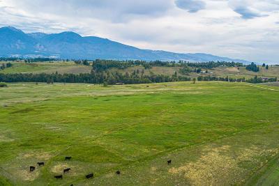 Stevensville Residential Lots & Land For Sale: 674 Stage Springs Lane