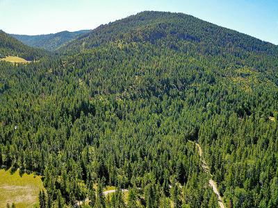 Residential Lots & Land For Sale: 22 Elk Meadow Lane