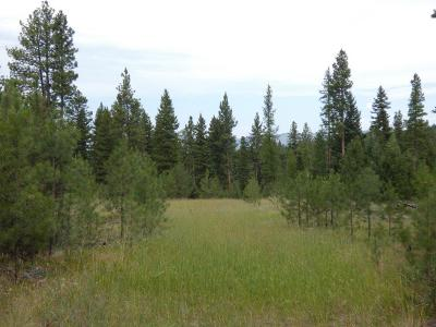 Missoula County Residential Lots & Land For Sale: Nhn Boyd Lane