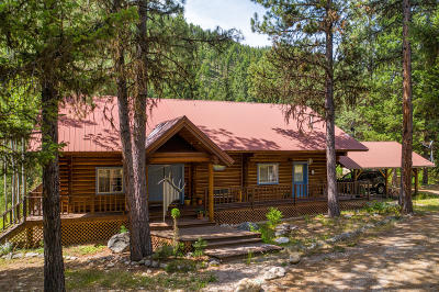 Ravalli County Single Family Home For Sale: 7206 Nez Perce Road