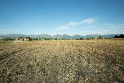 Ravalli County Residential Lots & Land For Sale: 1135 Prosperity Place