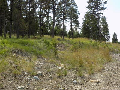 Flathead County Residential Lots & Land For Sale: 95 Lupine Crest Way