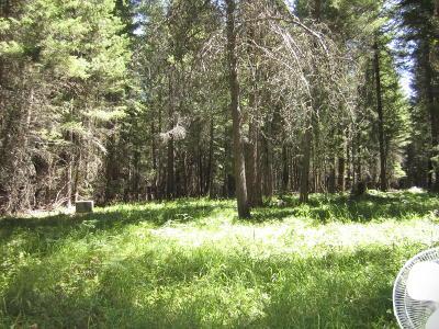 Flathead County Single Family Home For Sale: 1395 Echo Lake Road