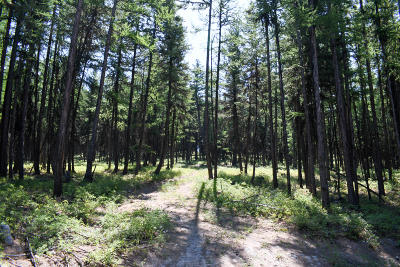 Lincoln County Residential Lots & Land For Sale: Nhn Phills Lake Road