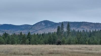 Missoula County Residential Lots & Land For Sale: Nhn Blixit Creek Road