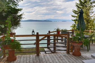Lake County Single Family Home For Sale: 31907 Mahood Lane
