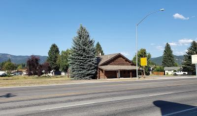 Lincoln County Commercial For Sale: 31975 Us Highway 2