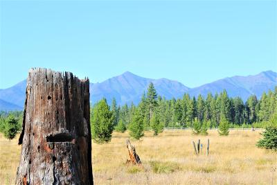 Missoula County Residential Lots & Land For Sale: 576 Daisy Lane
