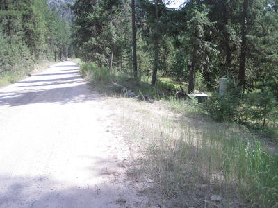 Alberton, Saint Regis, Huson, Heron, Noxon, Paradise, Superior, Thompson Falls, Trout Creek Single Family Home For Sale: 1422 West Fork Petty Creek Road