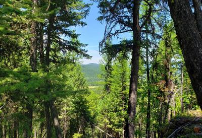 Lincoln County Residential Lots & Land For Sale: Jim Creek Acres Road