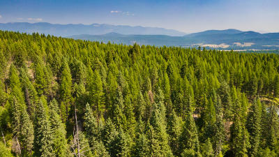 Whitefish Residential Lots & Land For Sale: Nhn Chinook Creek Road