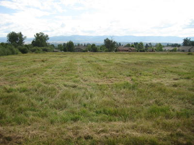 Florence Residential Lots & Land For Sale: Nhn Beck Lane