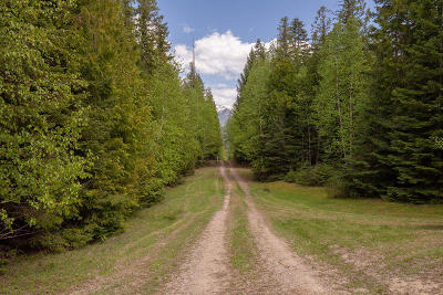 Lake County Residential Lots & Land For Sale: Nhn Chintzy Lane