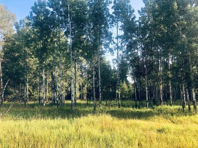Ravalli County Residential Lots & Land For Sale: 206 Chief Joseph Trail
