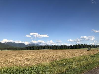 Kalispell Residential Lots & Land For Sale: Nhn Creston Hatchery Road