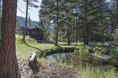 Missoula County Single Family Home For Sale: 4180 Petty Creek Road