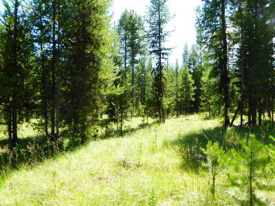 Flathead County Residential Lots & Land For Sale: 178 Idaho Hill Road