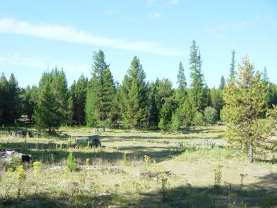 Lincoln County Residential Lots & Land For Sale: Lot 8 Island Lake Road