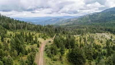 Missoula County Residential Lots & Land For Sale: 25254 West Ashby Creek Road