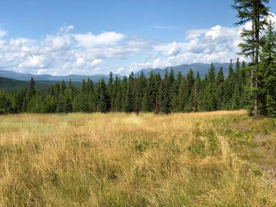 Flathead County Residential Lots & Land For Sale: 407 Glacier Hills Drive West