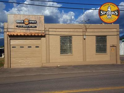 Lake County Commercial For Sale: 711 Main Street