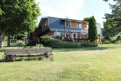 Lake County Single Family Home For Sale: 30634 Walking Horse Lane