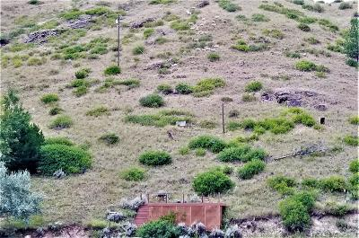 Wolf Creek  Residential Lots & Land For Sale: 2870 Holter Lakeshore Trak