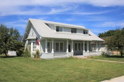 Stevensville Single Family Home For Sale: 319 College Street