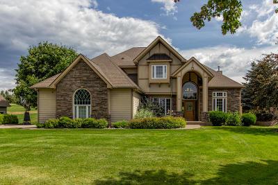 Lake County Single Family Home For Sale: 100 Eagle Drive