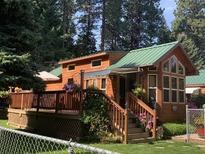 Lake County Single Family Home For Sale: 34597 Mt Hwy 35