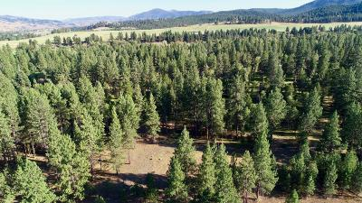 Ravalli County Residential Lots & Land For Sale: 266 Chief Joseph Trail