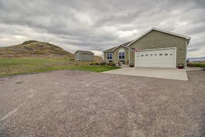 Lake County Single Family Home For Sale: 39377 Ingram Lane