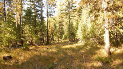 Lincoln County Residential Lots & Land For Sale: 136 Fern Drive