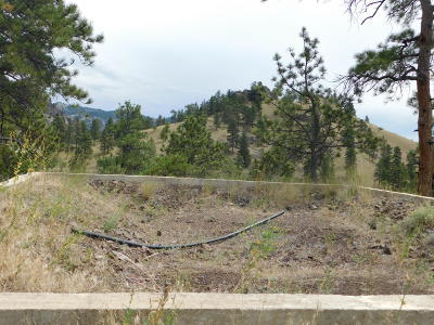 Cascade  Residential Lots & Land For Sale: 168 Dearborn River Road