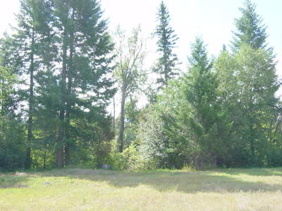 Columbia Falls Residential Lots & Land For Sale: 930 Riparian Drive