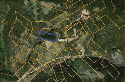 Neihart Residential Lots & Land For Sale: Nhn Pioneer Lane