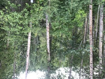 Columbia Falls Residential Lots & Land For Sale: 3175 North Fork Road
