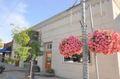 Lake County Commercial For Sale: 327/329 Main Street South East