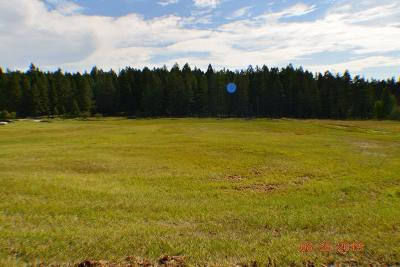 Flathead County Residential Lots & Land For Sale: 256 Dern Draw