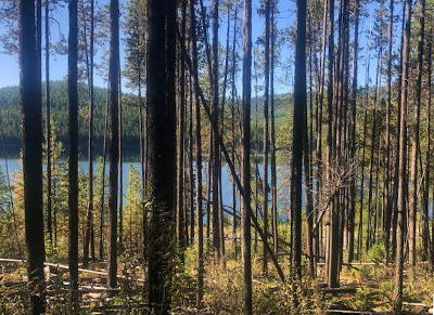 Marion Residential Lots & Land For Sale: 12815 Highway 2 West