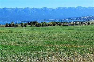 Polson MT Residential Lots & Land For Sale: $400,000