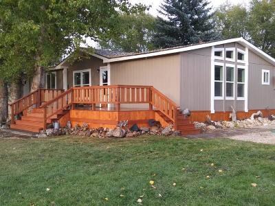 Stevensville Single Family Home For Sale: 4669 Hoover Lane