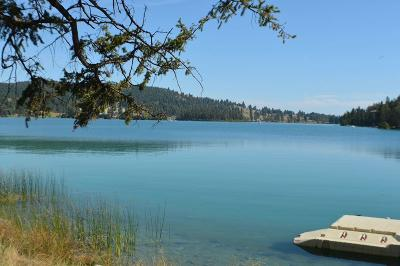 Flathead County Residential Lots & Land For Sale: Nhn Foys Lake Road