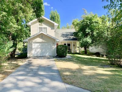 Flathead County Single Family Home For Sale: 505 Park Avenue