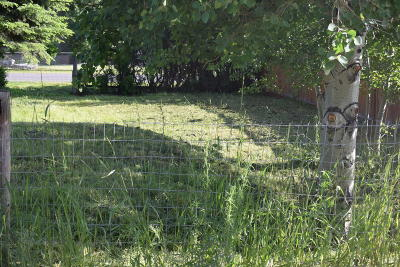 Butte Residential Lots & Land For Sale: Hobson Avenue