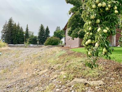 Flathead County Residential Lots & Land For Sale: 819 2nd Avenue West