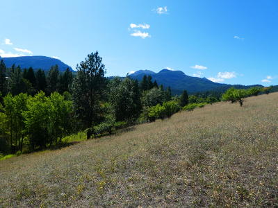 Darby Residential Lots & Land For Sale: Bunkhouse