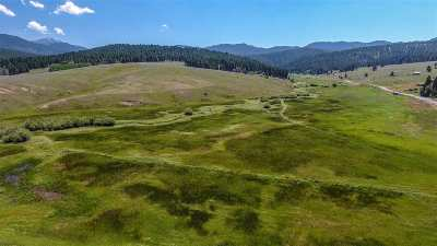 Butte Residential Lots & Land For Sale: 550 Basin Creek Road